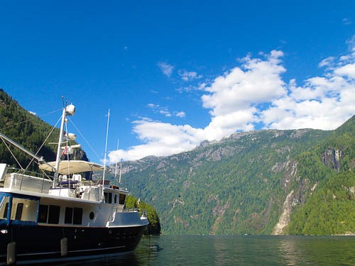 Tonic in Princess Louisa Inlet