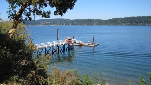 A downhill view of a dock with a red shed on it.