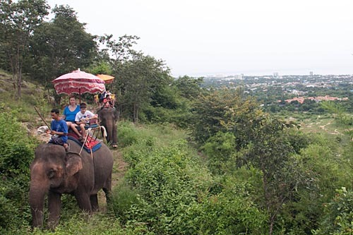 Two elephants walking on a hillside trail over Hua Hin.