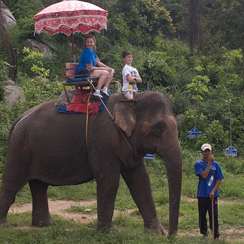Kellie and a confident Andrew riding an elephant.