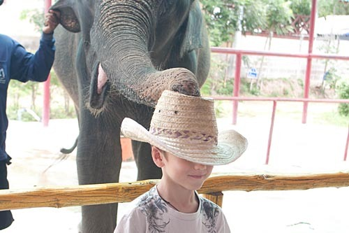 A baby elephant putting a straw cowboy hat on Michael's head.