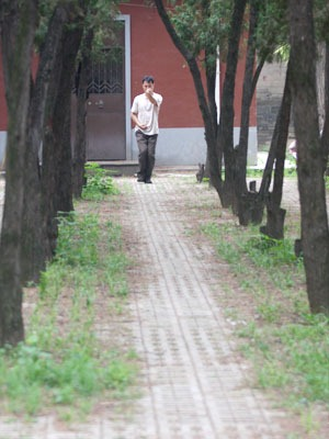 Man doing martial arts on a tree lined path.