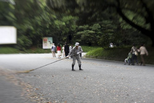 Caretaker sweeping the path at Meiji Shrine