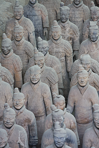 Rows of terracotta soliders viewed from the front.