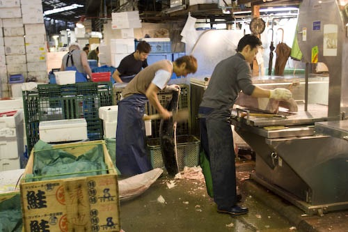 Fishmongers hack and saw huge pieces of frozen tuna at Tsukiji Fish Market