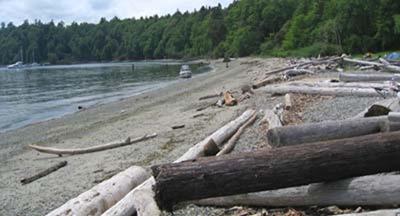 Blake Island beach