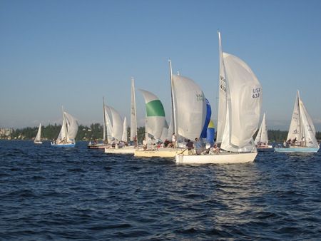 J24 fleet on a downwind leg