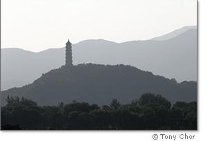 Pagoda Silouette