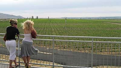 Kristen and Katya take in the vineyard view at Kiona