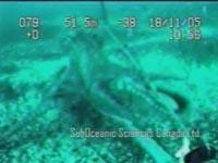 octopusattacksminisub.jpg