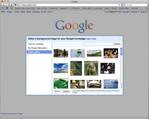 HTML dialog box over a dimmed Google homepage, asking user to select a background image from the public gallery.