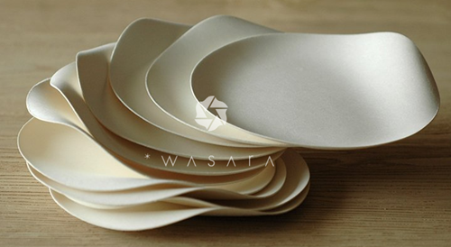 A stack of Wasara paper plates : best disposable plates - pezcame.com